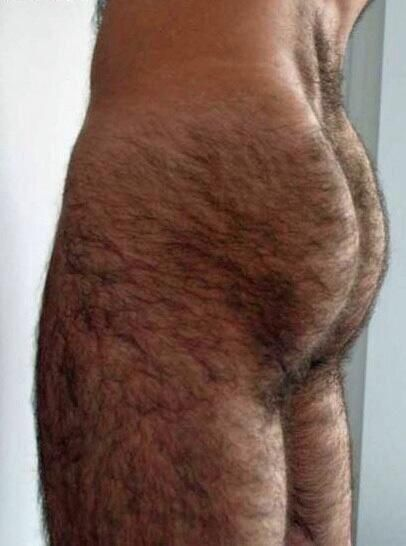 Hairy Mens Butts 54