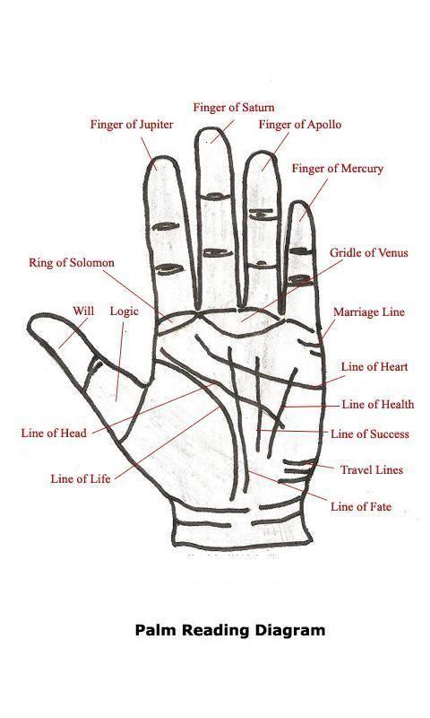 Palm Reading Diagram Palm Reading Palm Reading Charts Palmistry