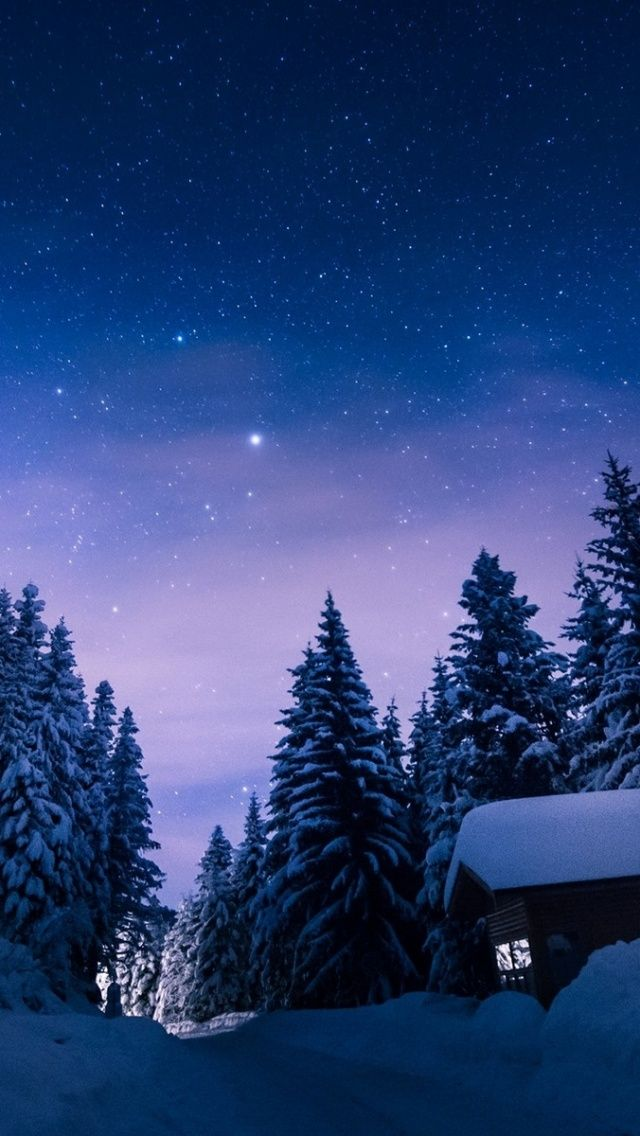 Stars Night Snow Forest House Winter Wonderland In 2019 Bulgaria