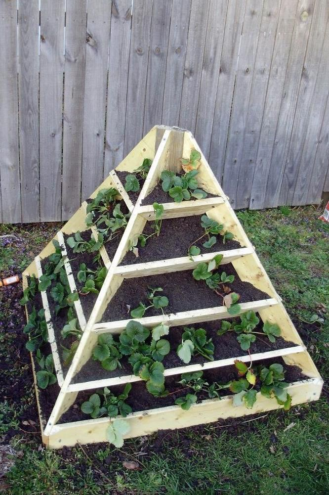 Strawberry Pyramid Raised Bed Beneath It All Is A Layer