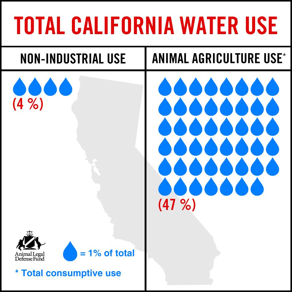 California Water News