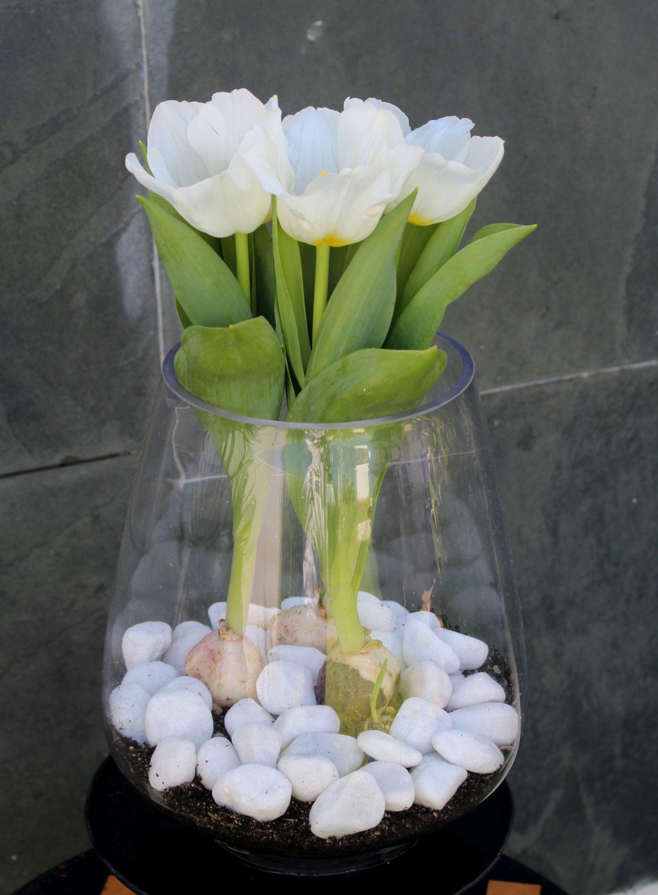 24 Jarrones de cristal decorados con piedras