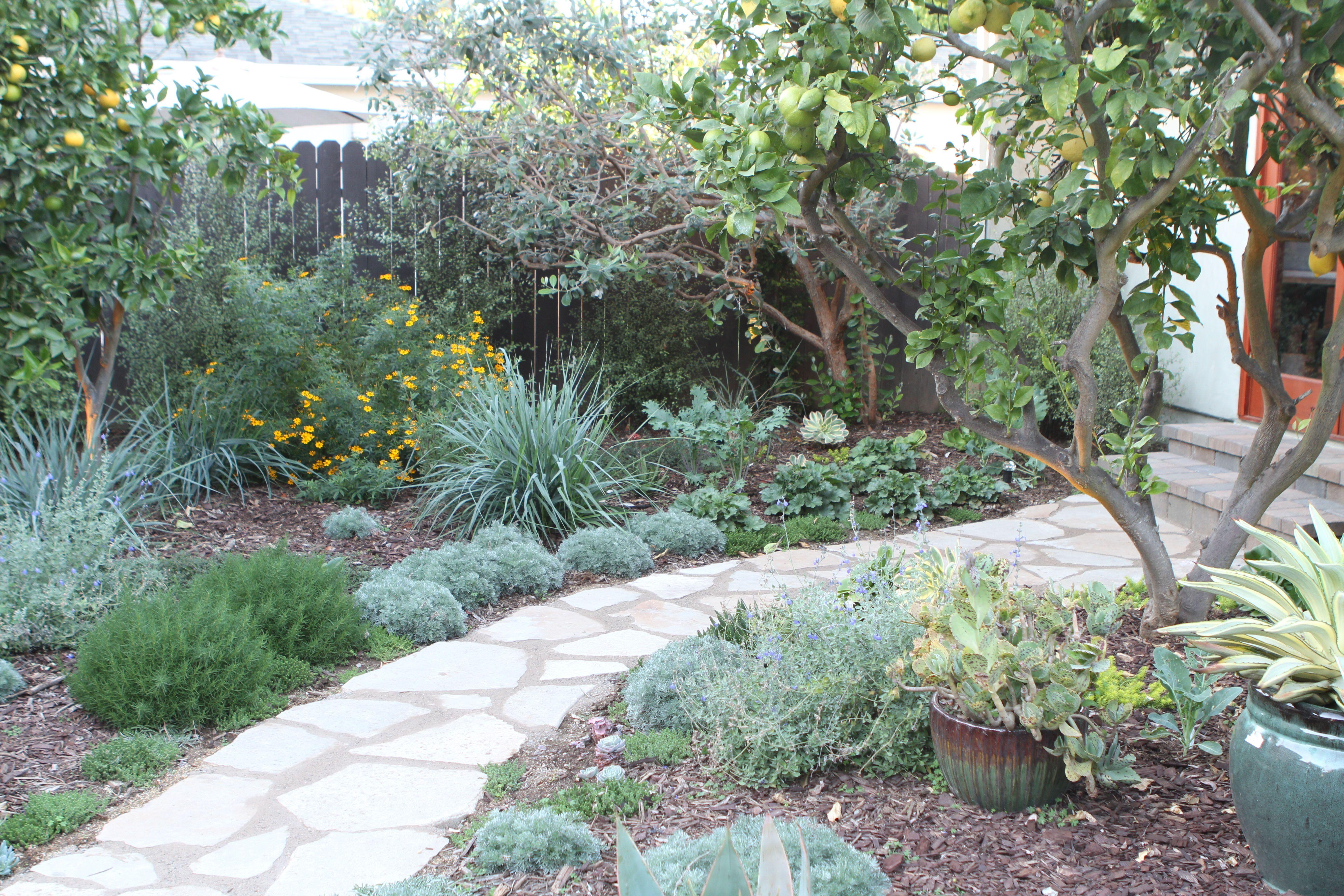 Pin By Arleen Ferrara Of Satori Desig On Satori Design Projects Garden Design Landscape Design Backyard Ideas For Small Yards