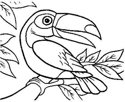 Tucano Com Imagens Tucano Desenho Desenho De Arara