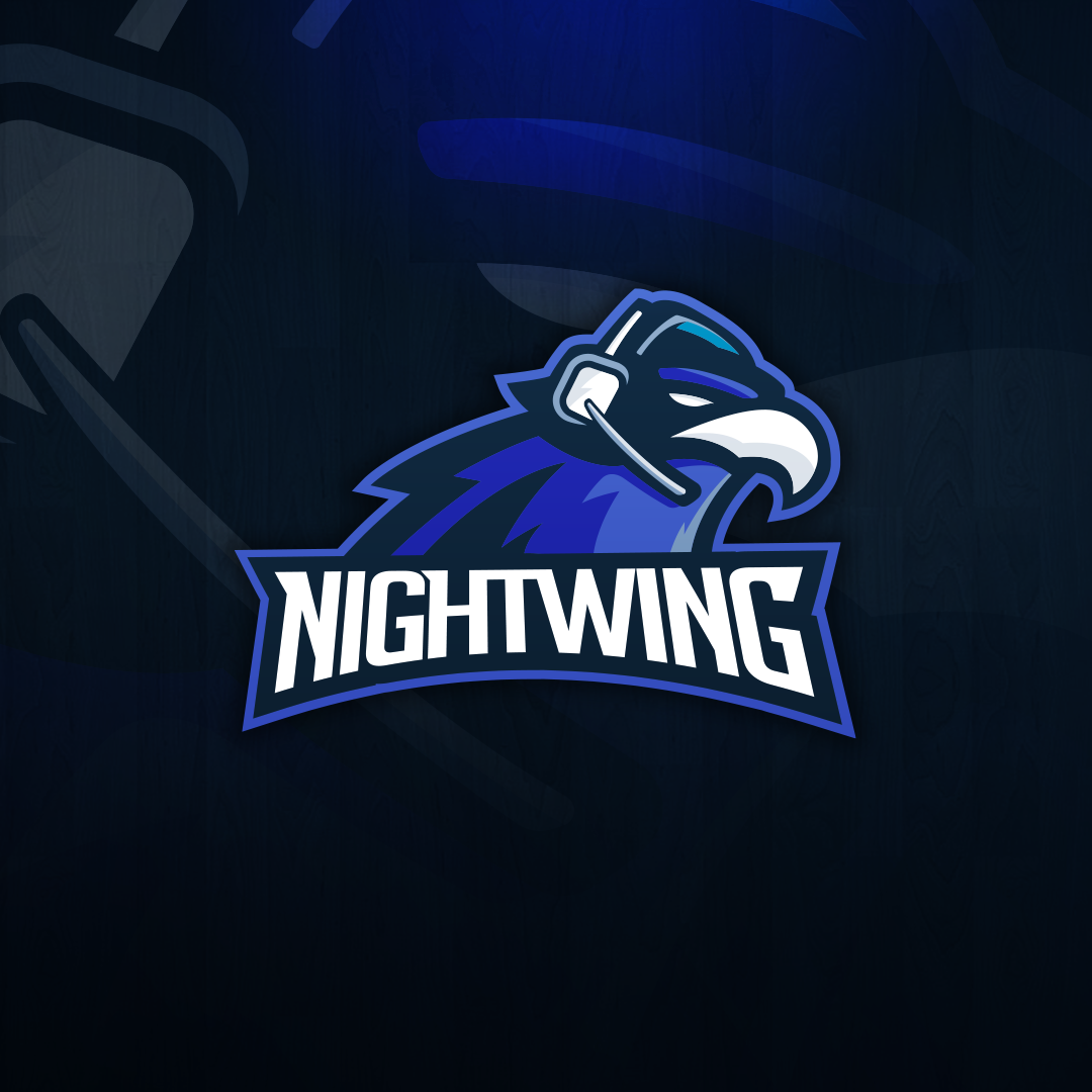 Mascot for BOT Nightwing on Behance Game logo design