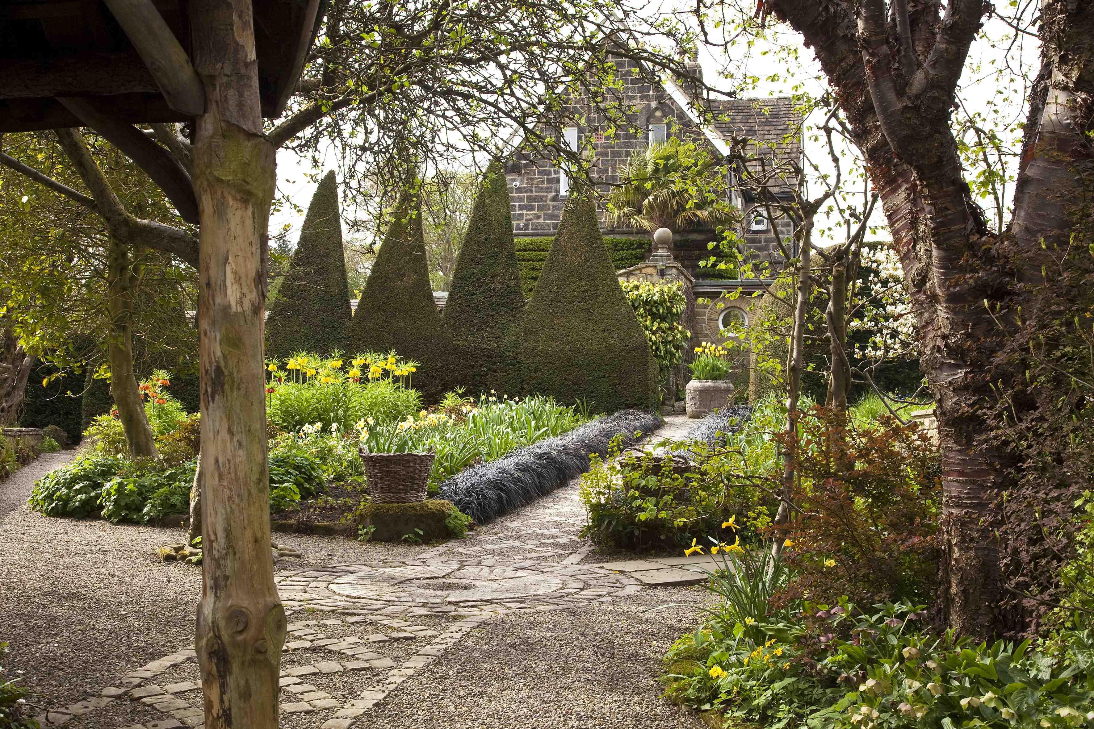 Yew Hedge York Gate Garden Leeds Perennial Perennial