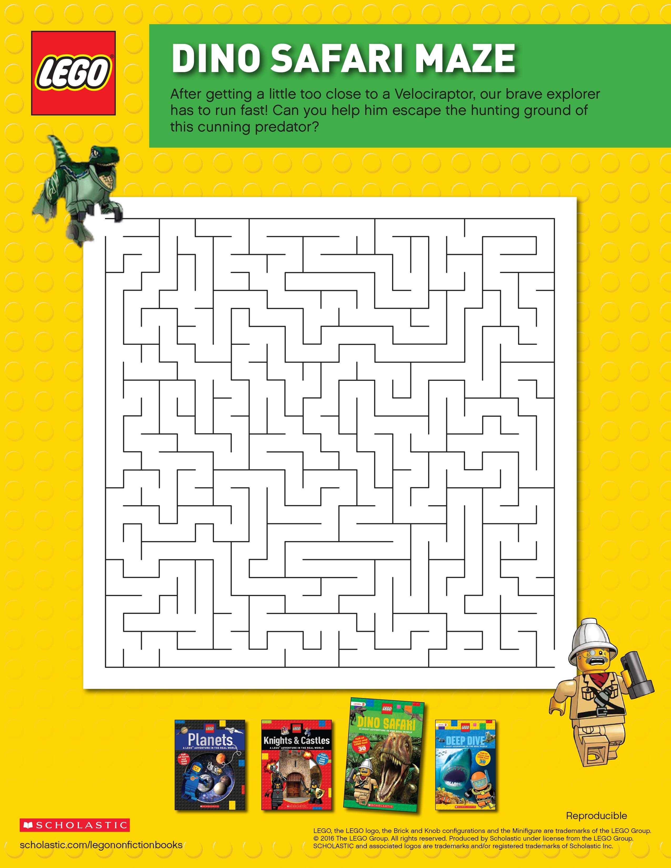LEGO Nonfiction books combine the fun and humor of LEGO minifigures