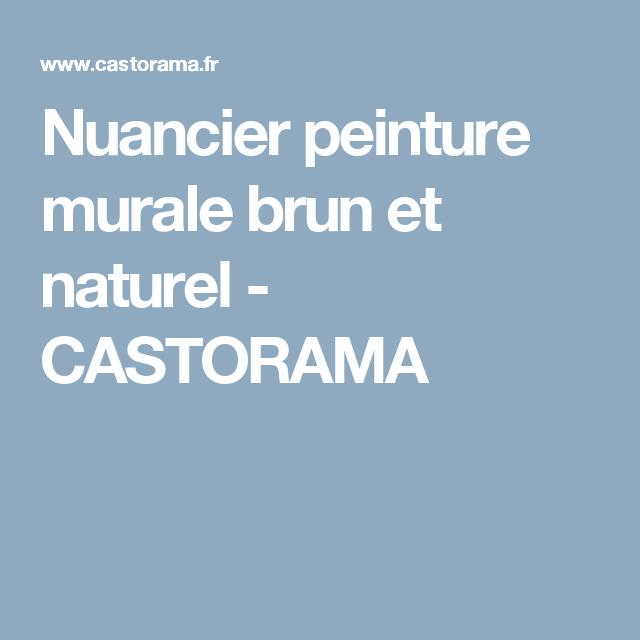 Nuancier Peinture Murale Brun Et Naturel Castorama