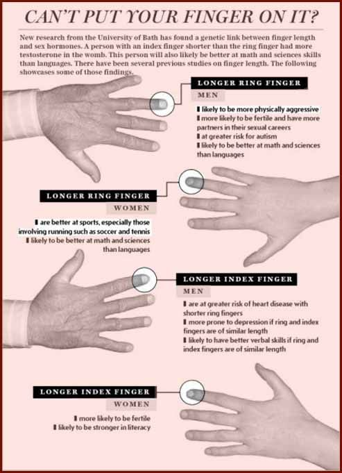 Finger length ratios and sexual orientation