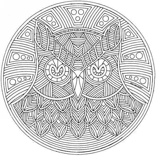 free owl mandala coloring page for adults