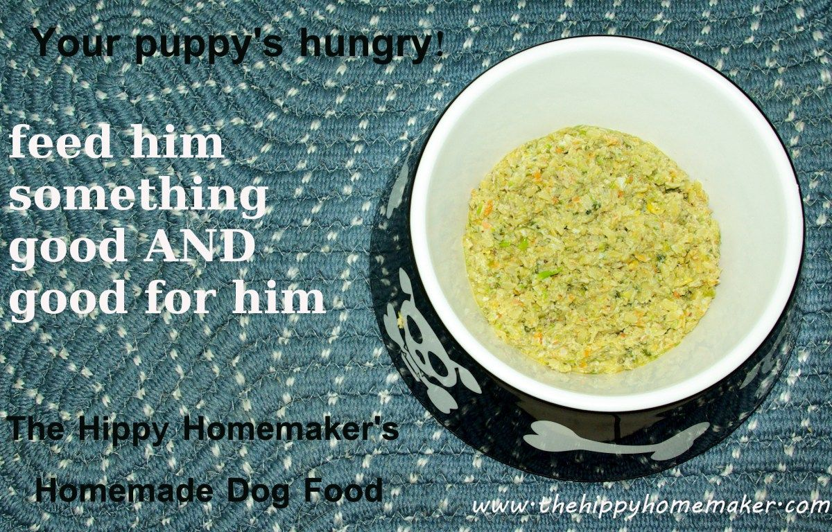 Make your own dog food and your dog will thank you every time that make your own dog food and your dog will thank you every time that you feed forumfinder Gallery
