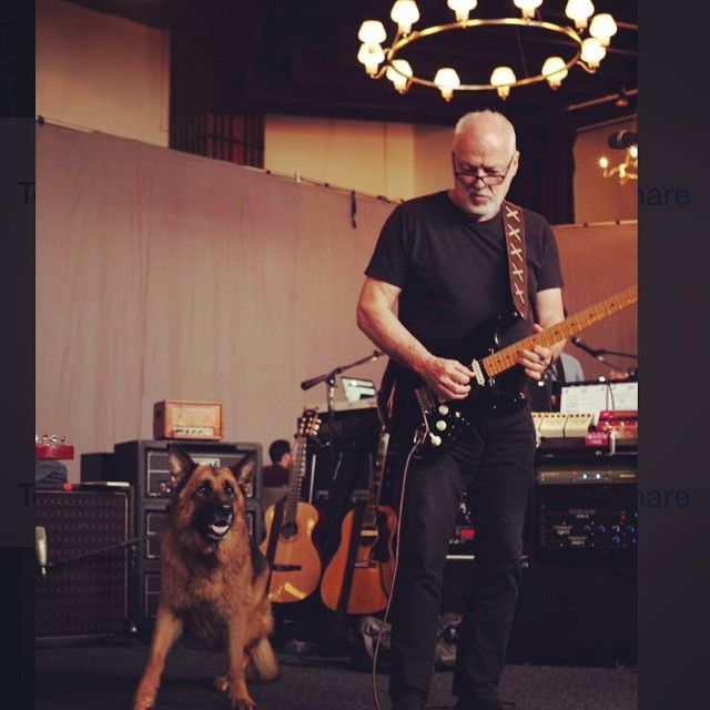 At rehearsals and Khan is pushing quite hard for Seamus to be on the setlist.