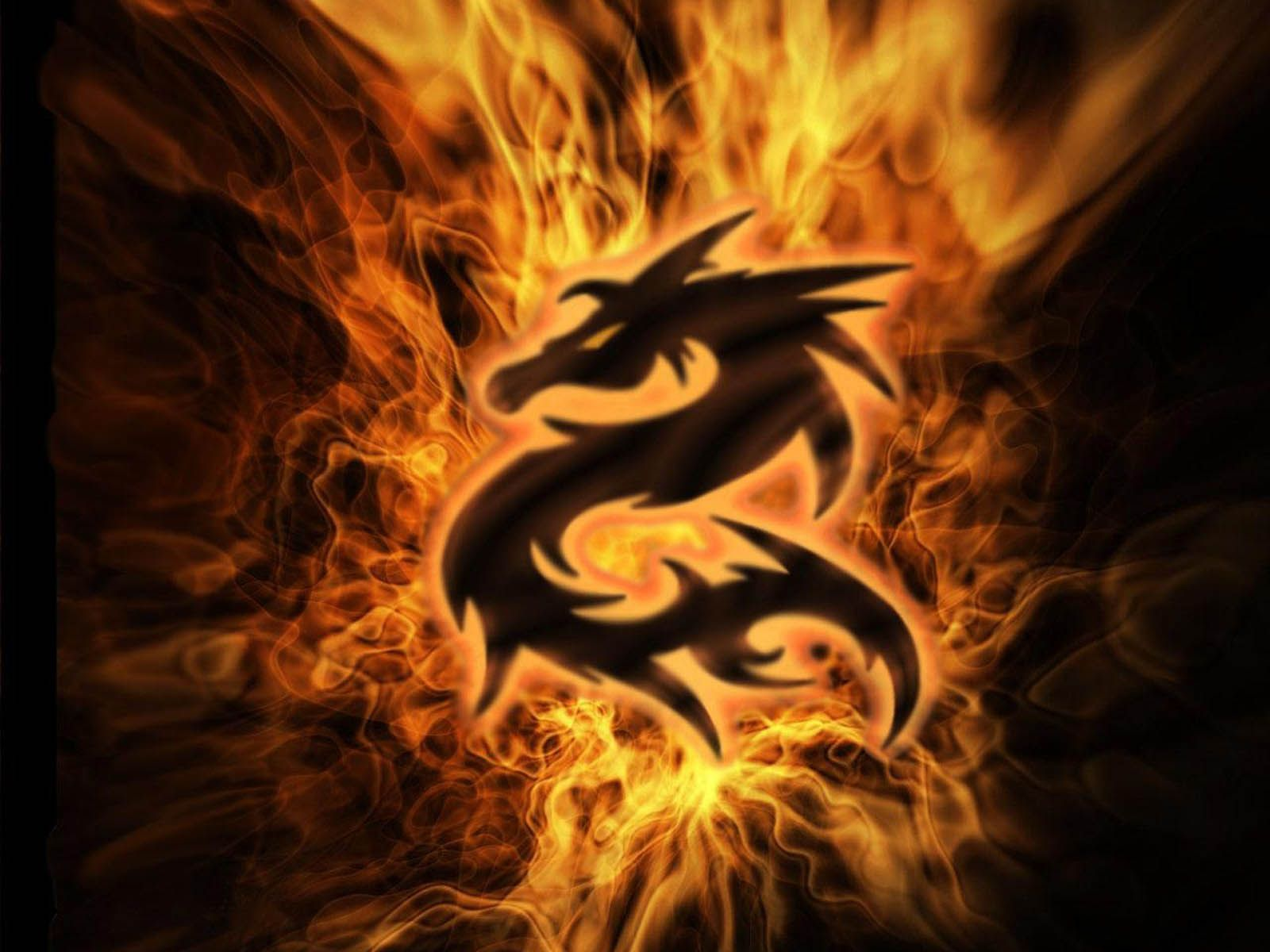 Free Dragons Wallpaper Dragon Pictures Dragon Images Fire Art