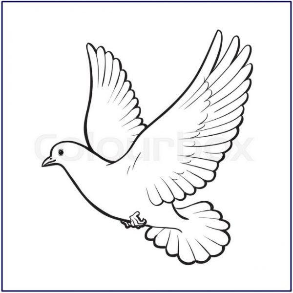 33 Gambar Burung Kartun Mudah- Kumpulan Sketsa Gambar ...