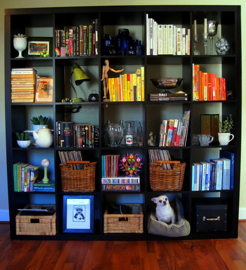 cube bookcase organization good idea but the chihuahua on the  - cube bookcase organization good idea but the chihuahua on the bottomcracks my shit up