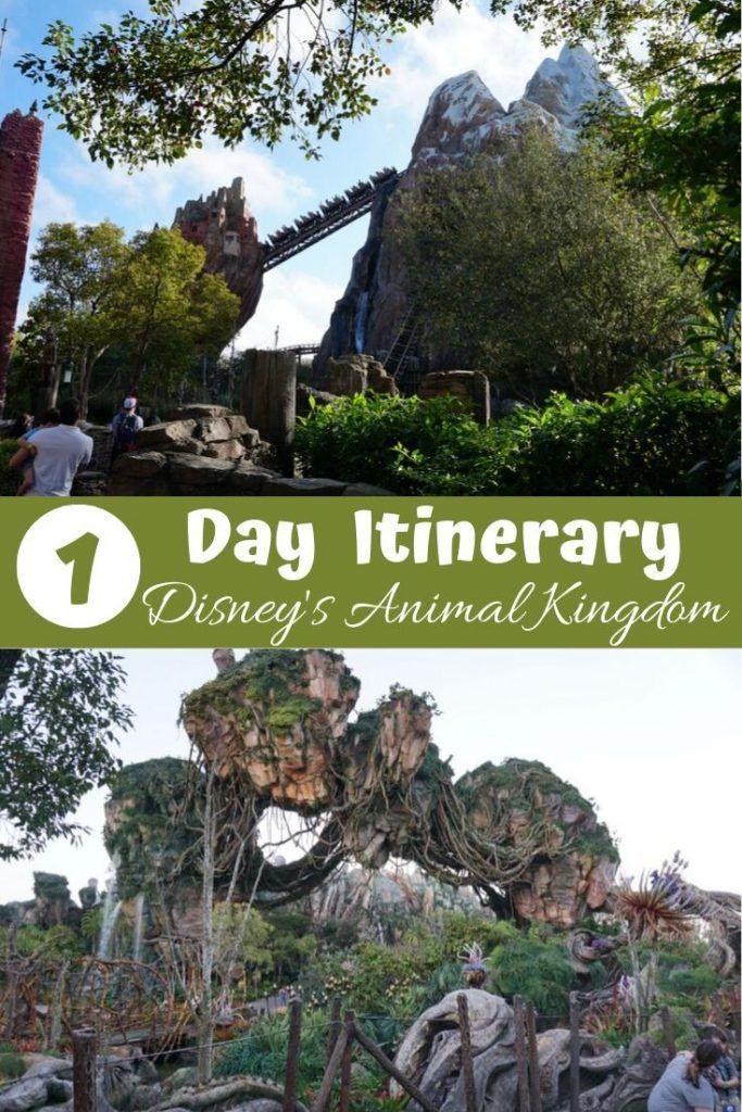 The Ultimate 1-Day Animal Kingdom Itinerary #animalkingdom