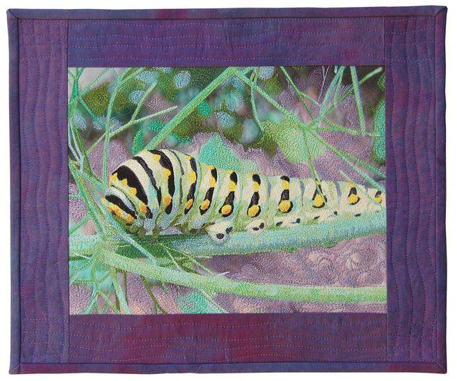 Caterpillar II Carol Morrissey