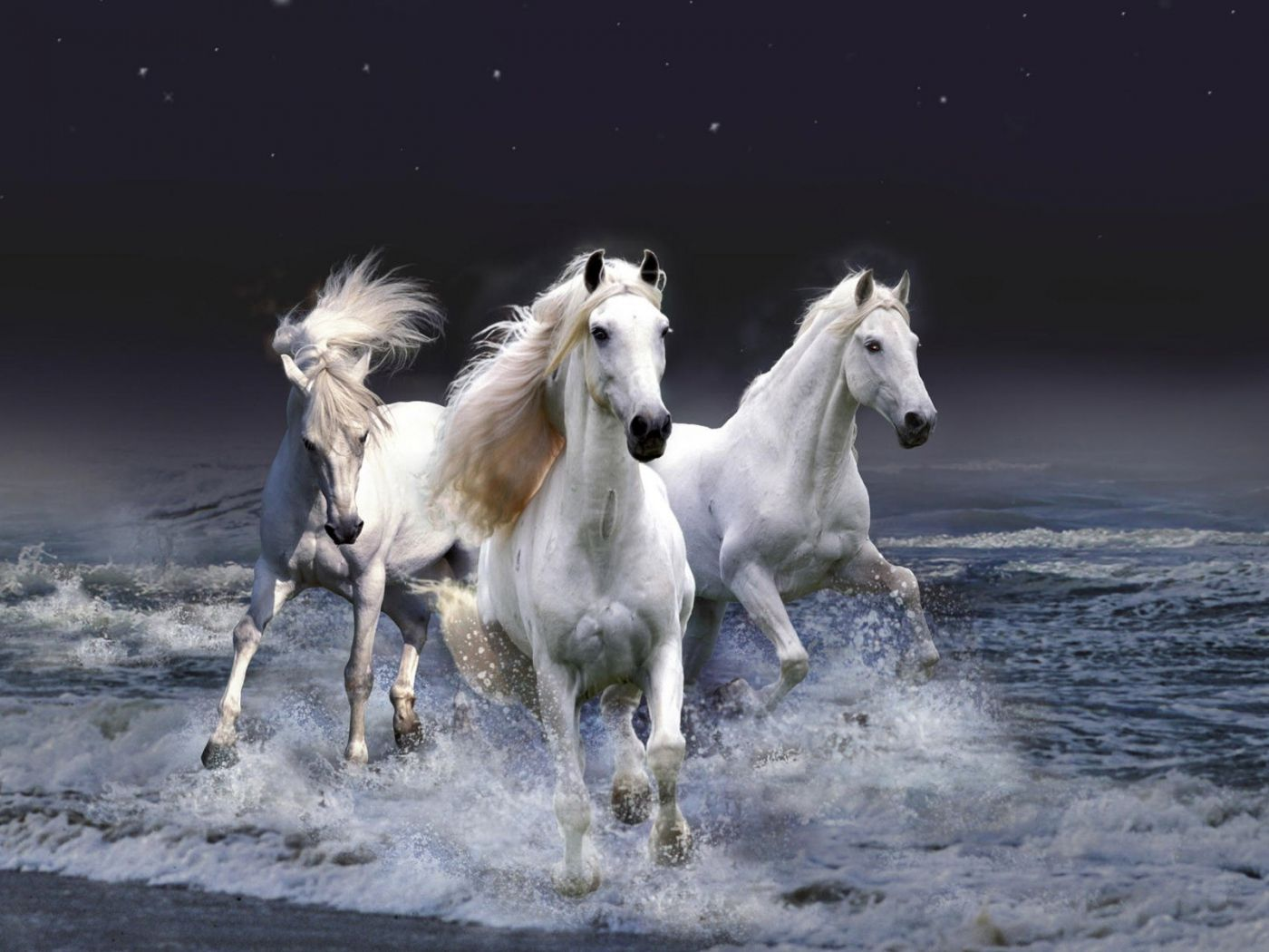Must see Wallpaper Horse Iphone 5s - 8a5350ebb8902552e14d79f228024f5c  Image_773778.jpg