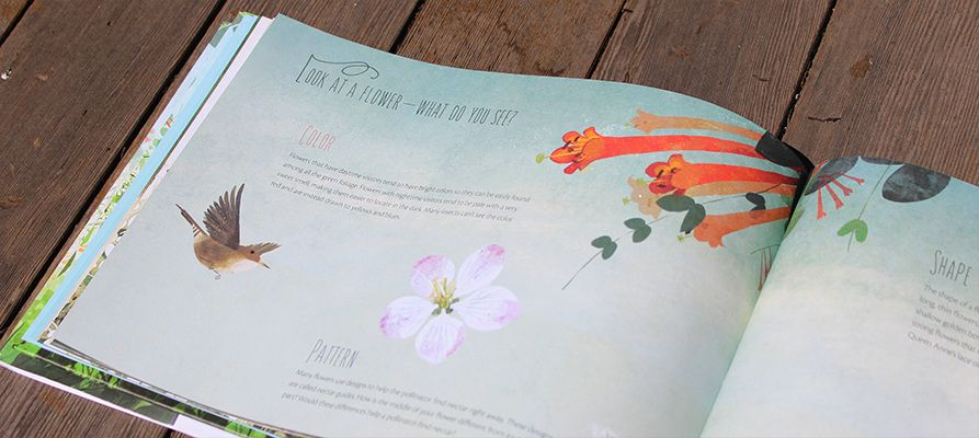 Flowers Are Calling Kenard Pak A Rhyming Book About Nature Showing Children The Connection Between Plants Animals And Insects And How They Play A Part In The