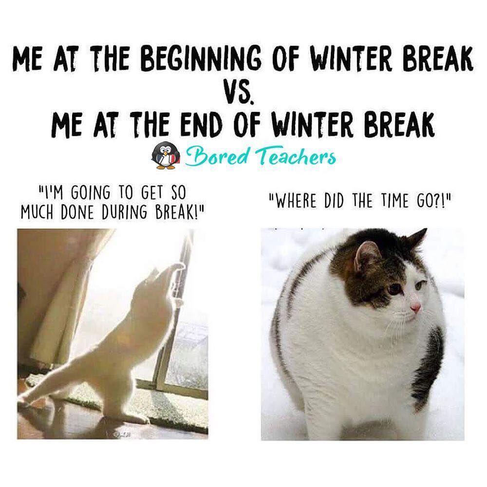 Looks About Right Bored Teachers Teacher Memes Teacher Jokes