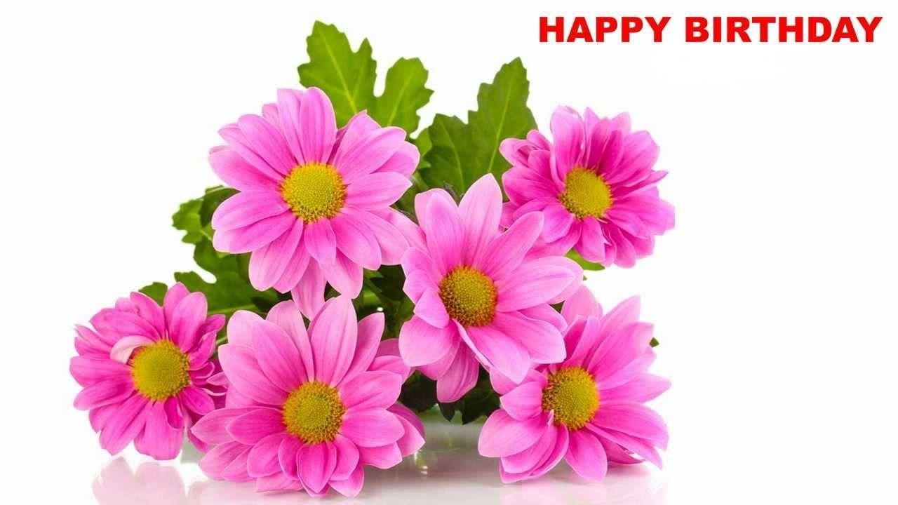 Pin by shaheen shafique on happy birthday images pinterest happy birthday songs birthday cards lotus flowers birthday greetings happy birthday images birthdays google search searching gifs izmirmasajfo