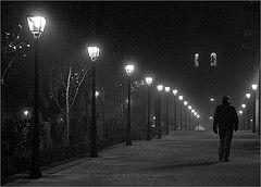 La niebla y la noche    (Explored)