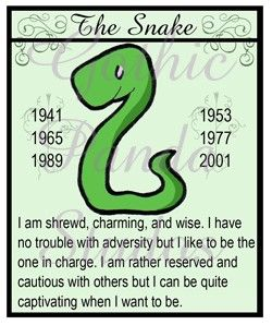 year of a snake horoscope