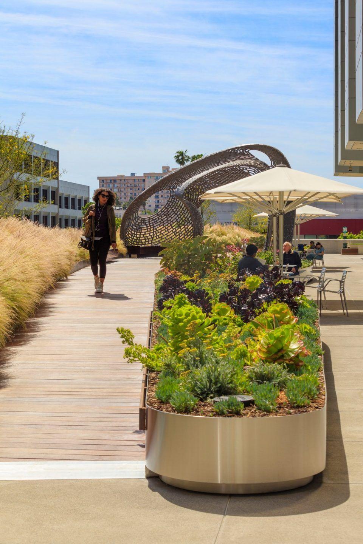 洛杉矶Cedars-Sinai医疗中心屋顶花园 / AHBE Landscape Architects - 谷