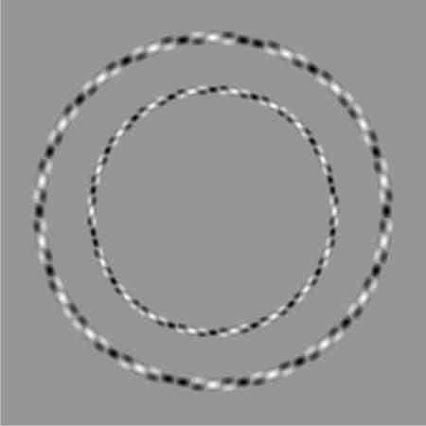 Dos círculos perfectos... aunque no lo parezca. #IlusiónÓptica #JuegosVisuales