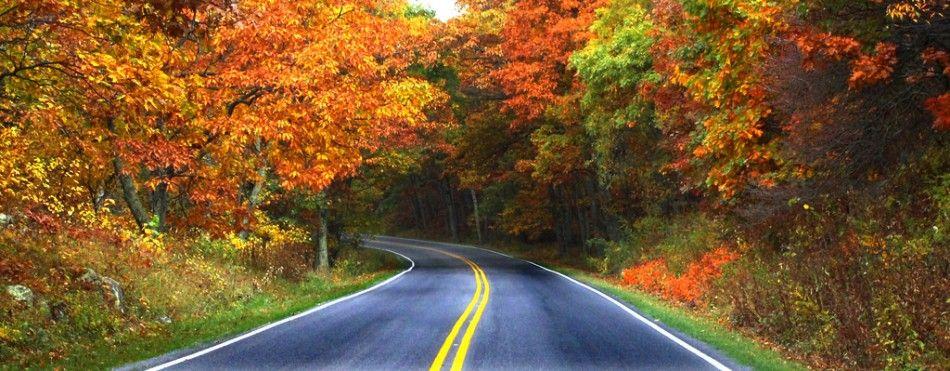 Skyline Drive Scenic road trip, Scenic roads, Scenic
