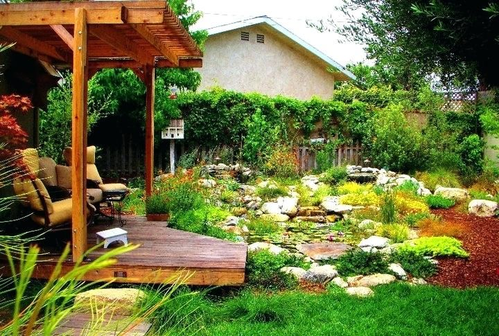 California Drought Tolerant Plants