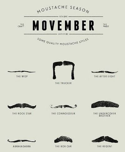 Get hairy for charity and men's health in Movember | Northern Star