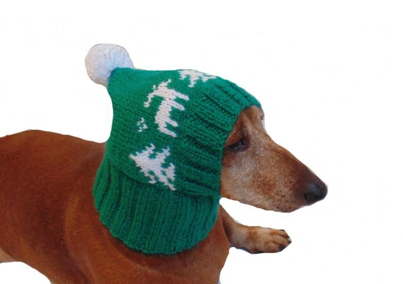 Winter Knitted Hat For Small Doghat For Dogs Pet Clothes Etsy
