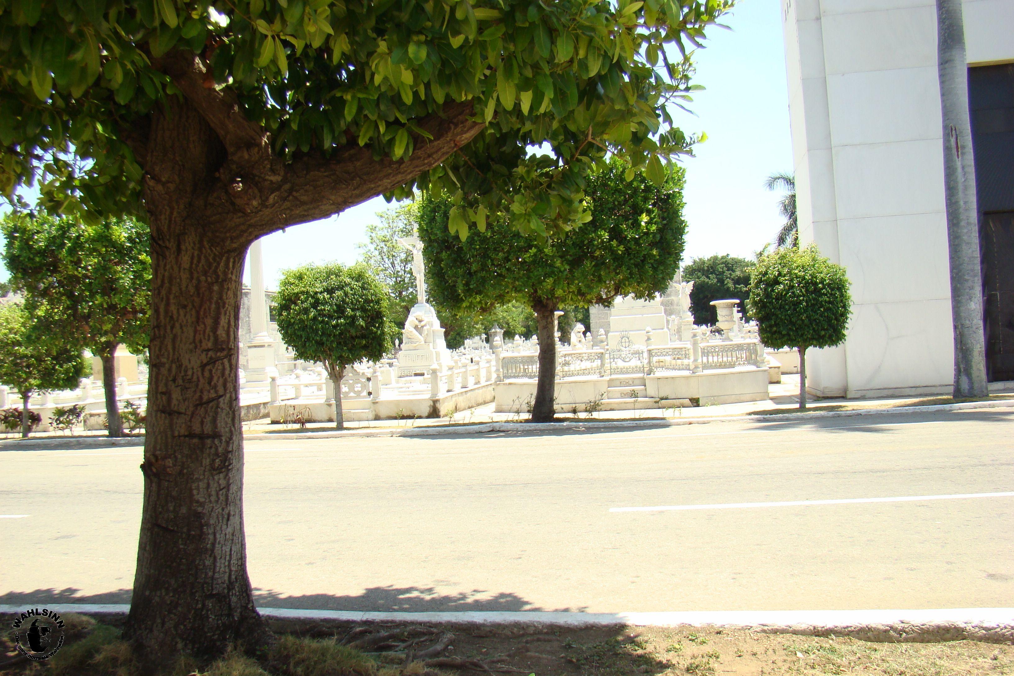 Friedhof oder Park? // Havanna (Kuba)