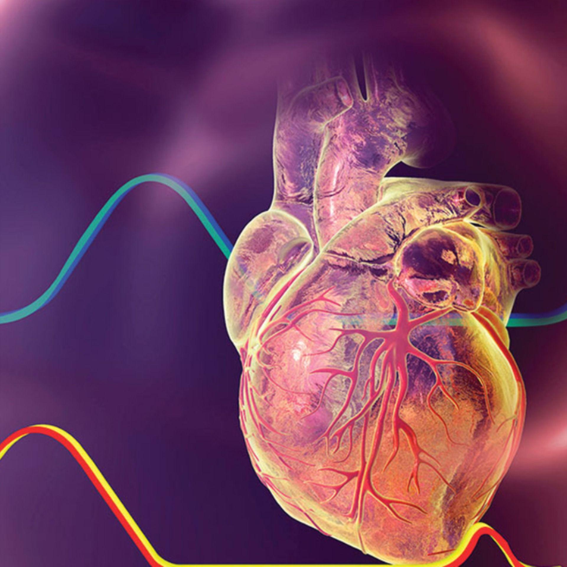 Cardiology And Cardiovascular Diseases Journal Cardiology Cardiovascular Disease Internal Medicine