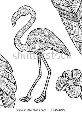 Vector Flamingo Tropical Illustration For Adult Coloring Book Hand Drawn Page