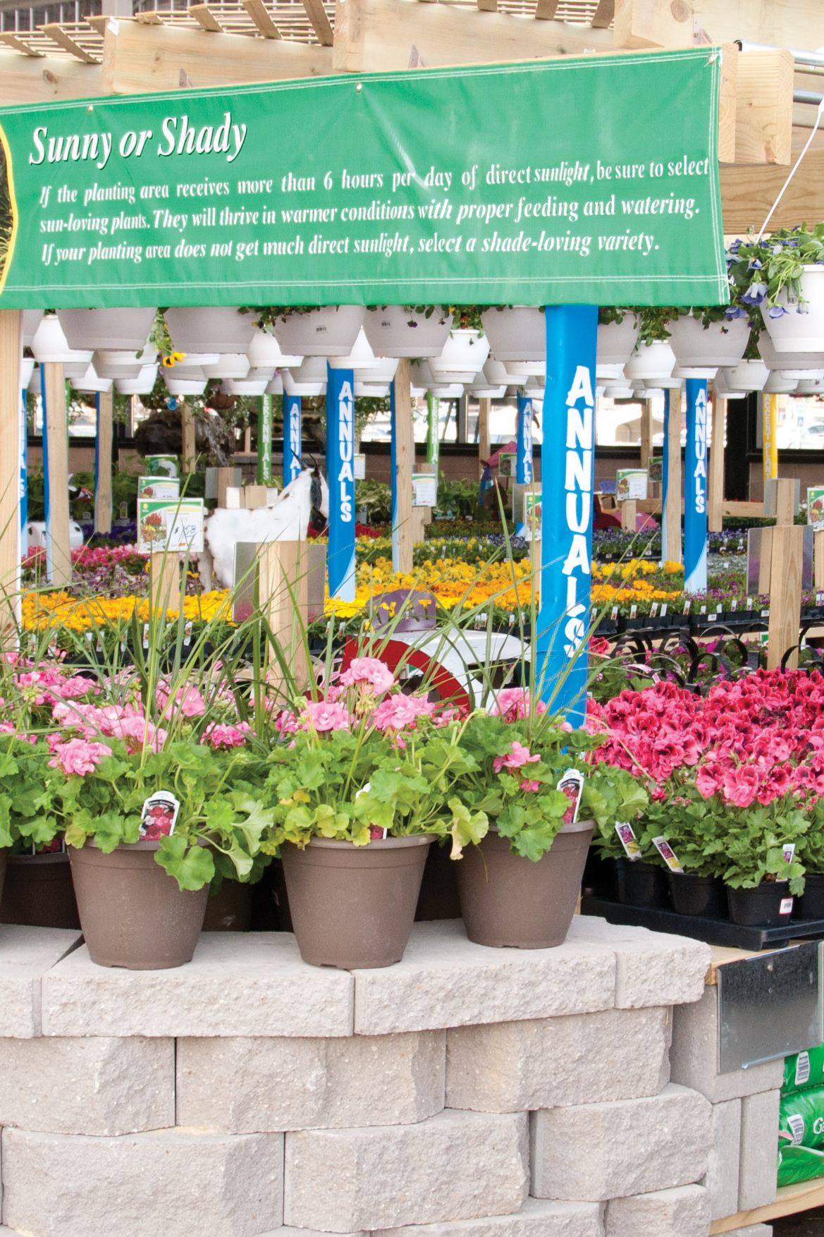 Get growing with Menards' Garden Center! From seed