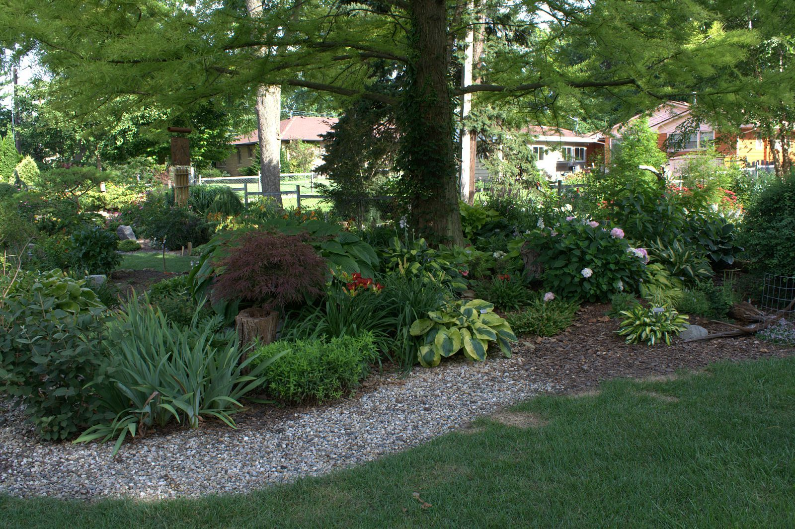 evergreen deciduous mixed plants landscape - Google Search | Our ...