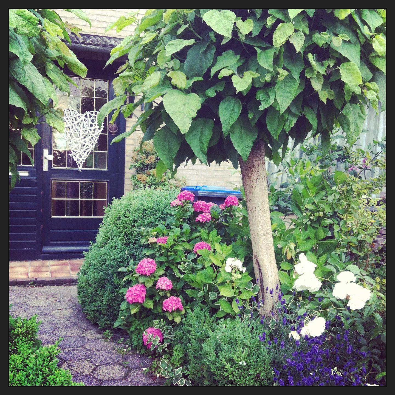 Mijn romantische voortuin tuin ideeen tuin tuin for Tuin renoveren tips