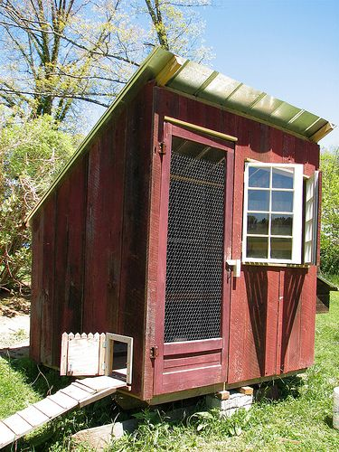 """Tiny Home Designs: Classic Sun-facing """"monitor""""-style Coop. Height, Air"""