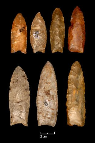 Clovis points from the Gault site in Texas