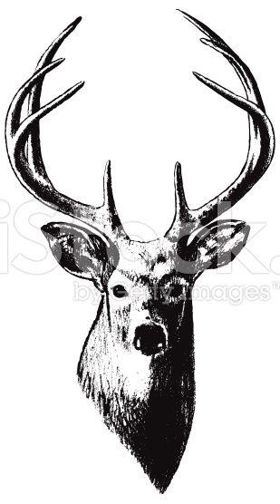 Dibujo de cabeza de venado buscar con google dibujos for Cabeza de ciervo