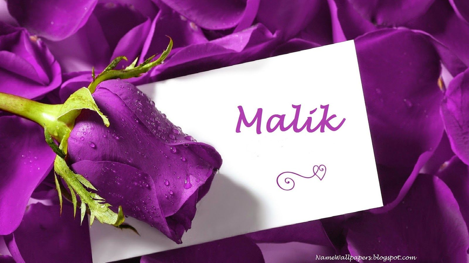 Malik Name Wallpapers Malik Name Wallpaper Urdu Name