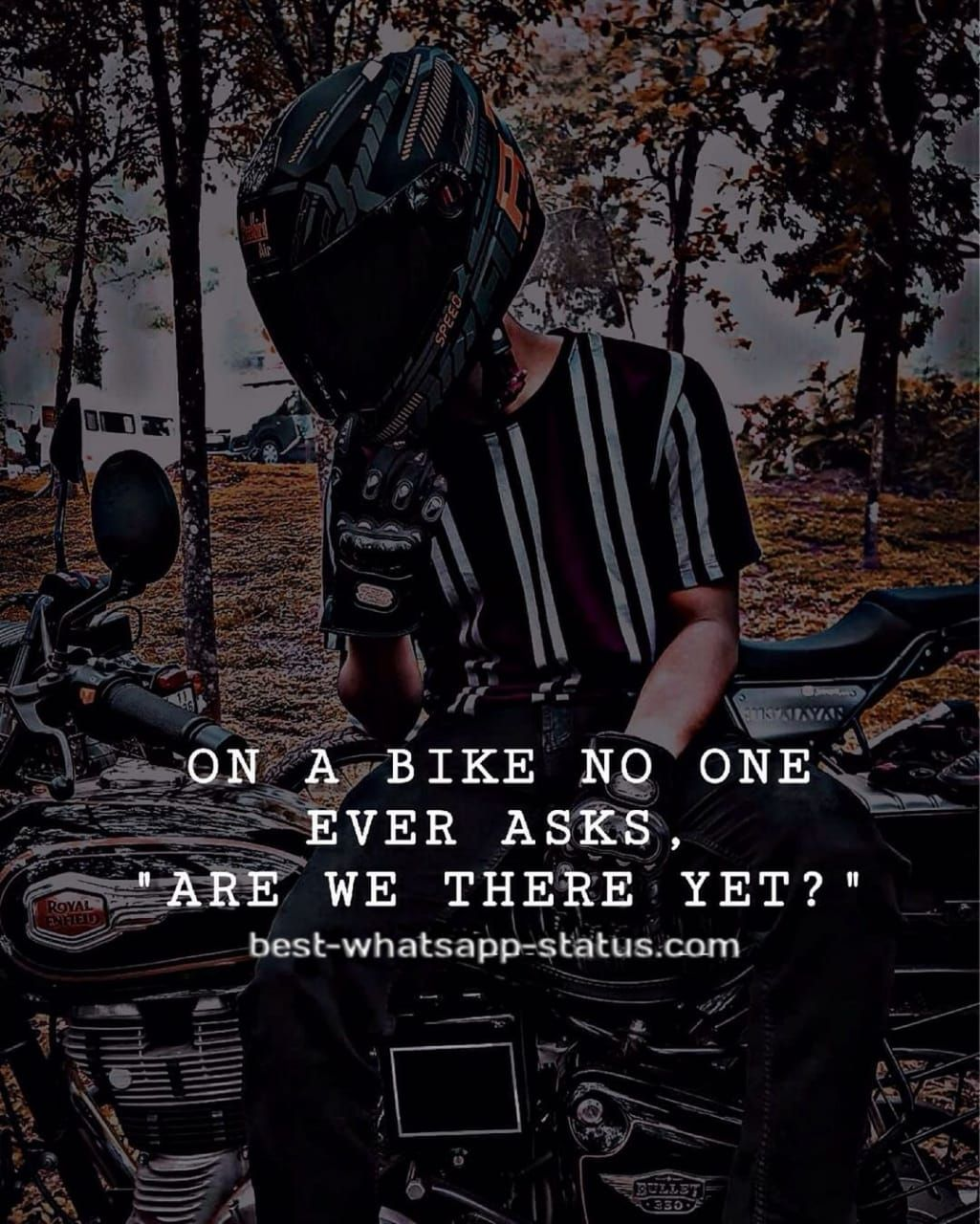 100 Best Quotes For Bike Lovers Bike Lovers Riding Quotes Best Quotes