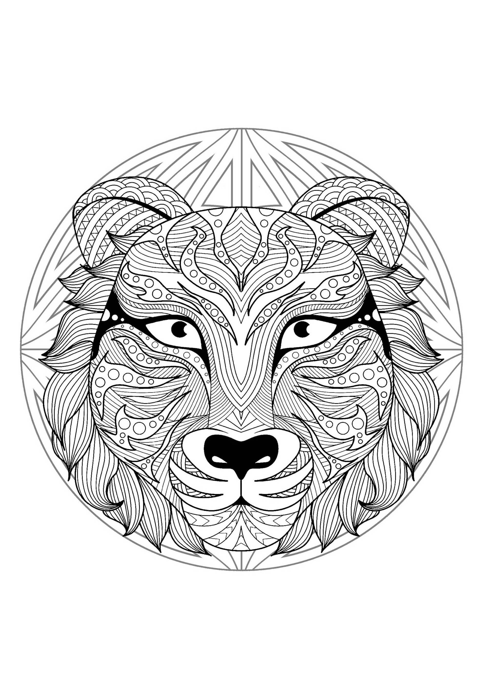 Mandala to color with very special Tiger head and simple patterns