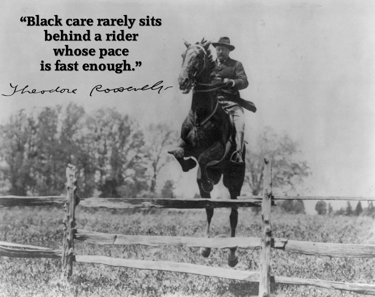 Almanac Of Theodore Roosevelt