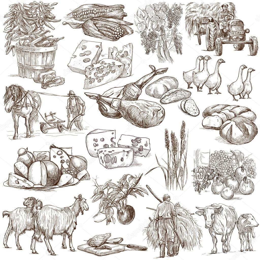 La Agricultura Para Dibujar De Mexico Buscar Con Google Agricultura Dibujos Manos Dibujo Dibujos