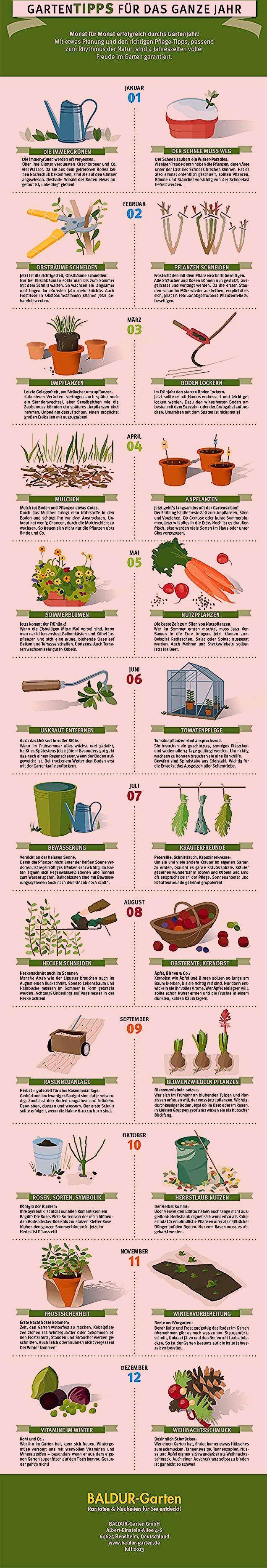 Photo of Gartenjahr als Grafik – hier geht's zu den Gartentipps