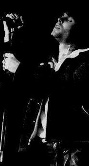 WEEDnesday: The Doors - Taringa!
