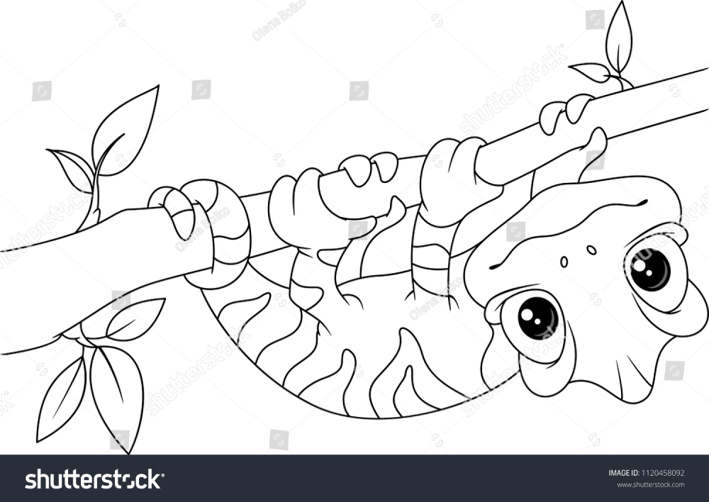 Chameleon On Branch Coloring Page Coloring pages, Cute